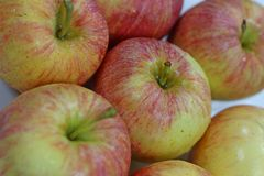 Wsadu świezi czerwoni jabłka obrazy royalty free