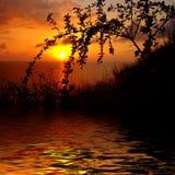 wschód słońca Zdjęcia Royalty Free
