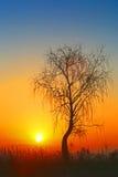 Wschód słońca Zdjęcie Royalty Free
