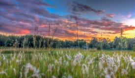 Wschód słońca Fotografia Stock