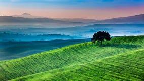 Wschód słońca dreamland w Tuscany obraz royalty free