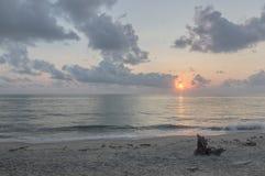 Wschód słońca & fiszorek Obrazy Royalty Free