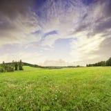 Wschód słońca i lato łąka Zdjęcia Royalty Free