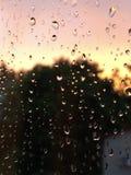 Wschód słońca & krople obraz stock