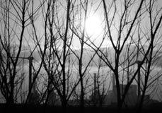Wschód słońca, krzaki i elektrownia, Zdjęcie Stock