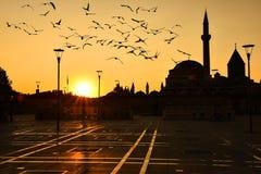 Wschód słońca, meczety i ptaki, obraz stock
