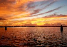 Wschód słońca na Neuse rzece obraz royalty free