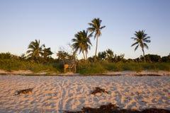 wschód słońca na plaży Zdjęcia Royalty Free