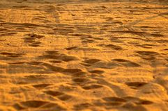 wschód słońca na plaży Obraz Royalty Free