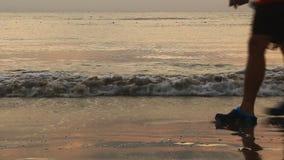 wschód słońca na plaży zbiory wideo