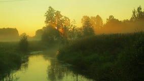 Wschód słońca na rzece z błyskawicznym prądem zakrywającym z mgłą zbiory