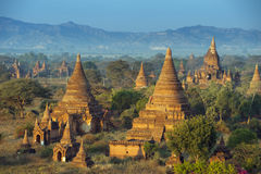 Wschód słońca nad świątyniami Bagan Fotografia Stock