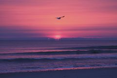 Wschód słońca nad Duxbury, Massachusetts Obrazy Stock
