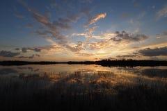 Wschód słońca nad Dziewięć mil stawem w błotach parki narodowi, Floryda obrazy royalty free