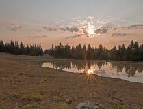 Wschód słońca nad dzikiego konia wodopojem przy świtem w Pryor gór Dzikiego konia pasmie w Montana usa Zdjęcia Stock