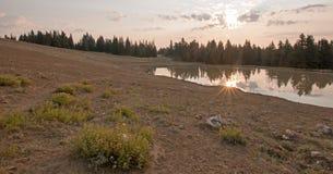 Wschód słońca nad dzikiego konia wodopojem przy świtem w Pryor gór Dzikiego konia pasmie w Montana usa Fotografia Royalty Free