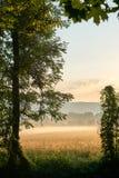 Wschód słońca nad grainfield z mgłą Żywi kolory z dramatycznymi chmurami Bayreuth, Niemcy pionowo Fotografia Stock