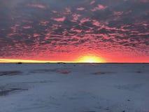 Wschód słońca nad jeziorem drewna obraz royalty free