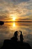 Wschód słońca nad Penquin Rzeźbą Zdjęcia Stock