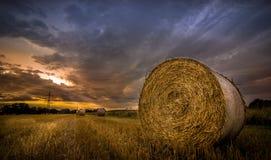 Wschód słońca nad polami siano Obrazy Stock