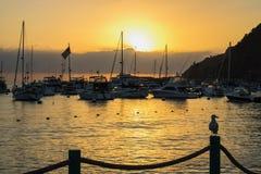 Wschód słońca nad schronieniem z łodziami, flaga i Seagull w profilu o zdjęcie stock