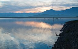 Wschód słońca nad stronniczo zanurzać nieżywymi gałąź w Jeziornym Isabella w sierra Nevada góry w środkowym Kalifornia usa fotografia stock