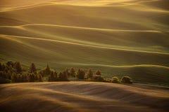 Wschód słońca nad tocznymi krajów wzgórzami obraz royalty free