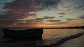 Wschód słońca nad tropikalną wyspy plażą, drzewkami palmowymi i zdjęcie wideo