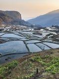 Wschód słońca nad YuanYang ryż tarasuje w Yunnan, Chiny, jeden opóźneni UNESCO światowego dziedzictwa miejsca zdjęcie royalty free