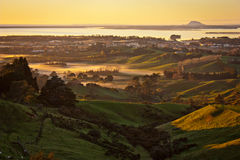 Wschód słońca od Katikati lokout, Północna wyspa Nowa Zelandia Zdjęcie Stock