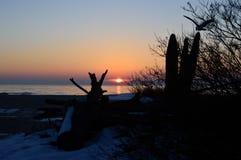 Wschód słońca plaża Obrazy Stock
