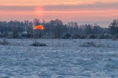 Wschód słońca przy śnieżnym mroźnym polem Zdjęcia Royalty Free