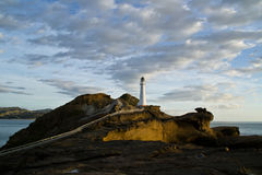 Wschód słońca przy Castlepoint latarnią morską | Nowa Zelandia Fotografia Stock
