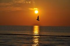 Wschód słońca przy Czarnym morzem Obrazy Royalty Free