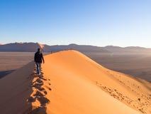 Wschód słońca przy diuną 45, Namib pustynia, Namibia Obraz Stock