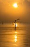 Wschód słońca przy Jeziorem Fotografia Royalty Free
