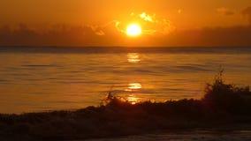 Wschód słońca przy Kalama, Kailua -, Hawai'i Zdjęcia Royalty Free