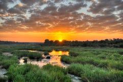 Wschód słońca przy Kruger parkiem narodowym Zdjęcie Stock