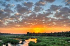 Wschód słońca przy Kruger parkiem narodowym Zdjęcia Stock