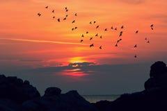 Wschód słońca przy morzem Fotografia Royalty Free