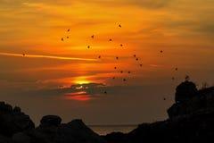 Wschód słońca przy morzem Zdjęcie Royalty Free