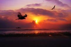 Wschód słońca przy Pantai Batu Hitam Fotografia Royalty Free