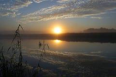 Wschód słońca przy rezerwatem przyrody Zdjęcia Royalty Free