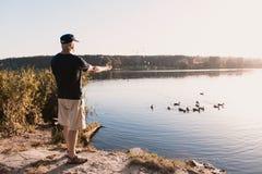 Wschód słońca Stary człowiek karmi kaczki na brzeg rzeki, stoi z jego plecy kamera Obraz Royalty Free