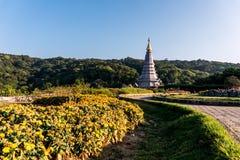 Wschód słońca strzelał stupę królewiątko Tajlandia w Phra Mahathat, Doi Inthanon park narodowy obrazy stock