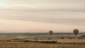 Wschód słońca Szybko się zwiększać Nad Masai Mara Podczas migraci Obrazy Stock