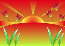 wschód słońca tulipany royalty ilustracja