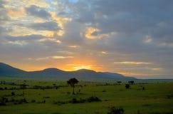 Wschód słońca w afrykańskiej sawannie, Kenja, Afryka Zdjęcie Royalty Free