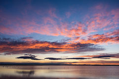 Wschód słońca w Camargue Obraz Stock