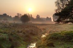 Wschód słońca w Cotswolds Zdjęcie Stock